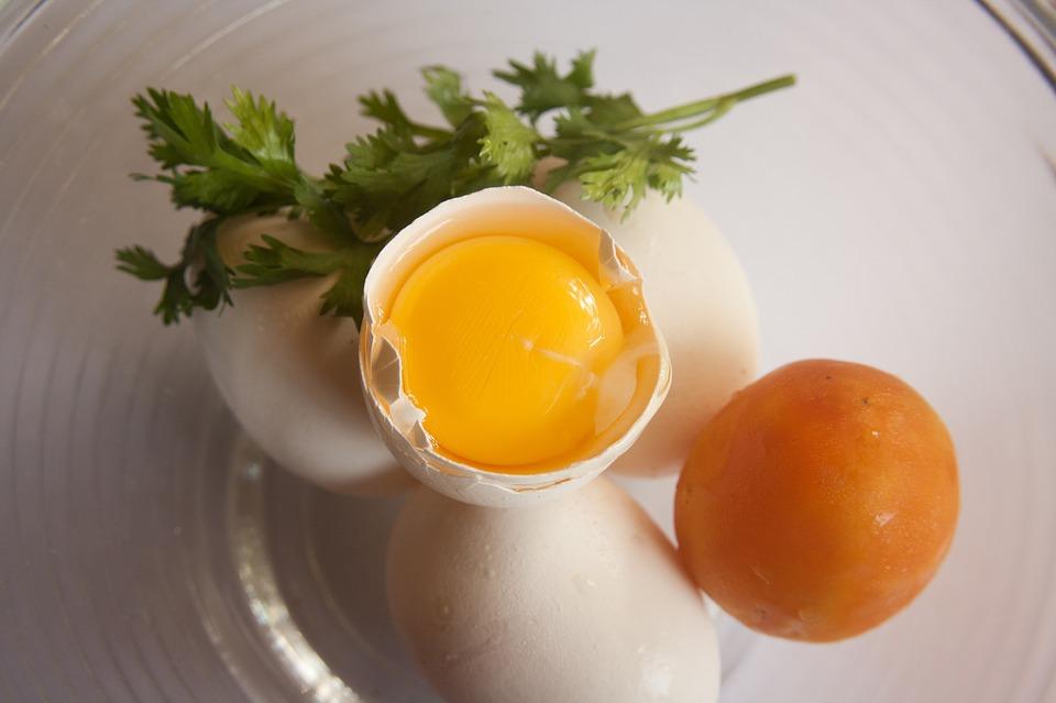5 motivos para inserir ovos na sua dieta